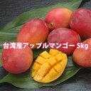お中元 御中元 ギフト アップルマンゴー 台湾産 5kg 送料無料