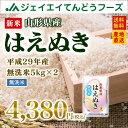 新米 無洗米 10kg 送料無料 29年産米 山形県産はえぬき無洗米10kg(5kg×2) ※一部地域は別途送料追加 お米 コメ 米 JA 予約商品