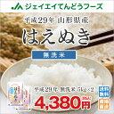 米 送料無料 無洗米 10kg 山形県産はえぬき無洗米10kg(5kg×2) ※一部地域は別途送料追加 お米 コメ 米 JA