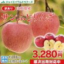 訳あり りんご 10kg 送料無料 山形県産 りんご 約10kg(28〜56玉) バラ詰め ※一部地域は別途送料追加 フルーツ 果物 サンふじ t02 果物