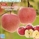 りんご 訳あり 10kg 送料無料 山形県産 サンふじりんご 約10kg(28〜56玉) バラ詰め ※一部地域は別途送料追加 フルーツ 果物 t02 果物