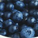 (お盆も営業中)冷凍有機ブルーベリー(オーガニックフルーツ業務用1kgパック)≪冷凍フルーツ≫