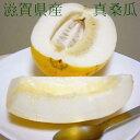 真桑瓜 (まくわうり)約5kg 10〜12個前後入り  滋賀産瓜という名の懐かしい水菓子が マクワウリ です。希少品のためお届け日はご指定いただけません ※贈り物にはむきません