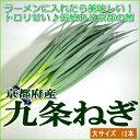 京都産 「京野菜」九条ネギ (くじょうねぎ) 12本前後入り店長おすすめ商品ですすき焼きに入れたい美味な食材「九条ねぎ」です。冬が旬です。ラーメンにも合います 02P05Nov16