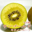 NZ産 サン ゴールドキウイ「ジャンボ」約3.6kg 大玉 22個入り ゼスプリ|黄金 母の日 父の日 ギフト プレゼント キウイフルーツ