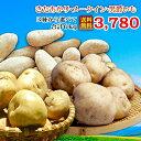 じゃがいも 玉ねぎ 2020新じゃが&新たまねぎ 送料無料北海道十勝産 お好きな2種 6kgセット(男爵・メークイン・きたあかり・たまねぎから2種)【Mサイズ】