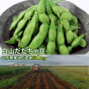 送料無料 白山だだちゃ豆 1kg ※枝豆、えだまめ、まめ、マメ、豆、生豆、ダダチャマメ、だだちゃまめ、
