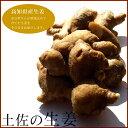 生姜(しょうが)高知県産 1kg 生姜大国の土佐よりお届けします!【RCP】【グルメ201212_食品】【10P02jun13】