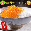 ■新米■令和2年産 宮城県産 ササニシキ 30kg 【米】 玄米,5分,7分,精白米(精米時重量約1割減)【hu】
