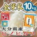 金芽米【無洗米】 大分県産ヒノヒカリ10kg【5kg 2袋】【送料込】【29年産】【上質な甘みで人気の金芽米】【とがずに炊ける無洗米】【LPS豊富 免疫力】きんめまい