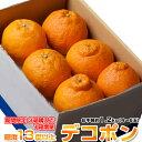 送料無料 熊本県産 デコポン 約1.2kg(4〜6玉)【3箱買えば1箱オマケ】