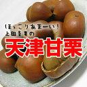 【送料無料メール便】天津甘栗180gx1個