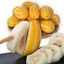 韓国産 チャメ 10kg 1box(43-45) 季節数量限 果物 フルーツ ゴールドメロン チャーメ まくわうり マクワウリ 夏バテ