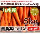 【送料無料】洗いフルーツにんじん5kg ちょっと訳あり 九州産 無農薬