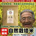 【お試し品】無肥料無農薬米まっしぐら玄米300g(平成30年度産・青森県産)【送料無料】