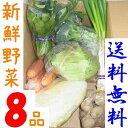 山口・九州産【送料無料】 『新鮮野菜の詰め合わせ8種類』(人参・キャベツ・ピーマン・ほうれん草・玉ねぎ他)