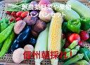 【信州産】朝採れ 農直野菜&果物詰め合わせセット 無農薬栽培だから安心安全♪