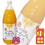 無添加 山口県産 みかんジュース 瓶 1L×6本入 1000ml 日本果実工業 /飲料