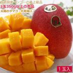 太陽のタマゴ 1玉 2L 約300〜350g 化粧箱入 宮崎産 完熟マンゴー 太陽のたまご ギフト マンゴー