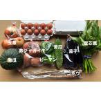 九州佐賀の農家直送野菜セット・送料無料・常温発送・お野菜8品+こだわりのたまご20個8月