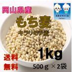 もち麦 国産 1kg TVで話題 ポイント消化 1000  30年産 格安 きらりもち麦 (500g×2袋)  送料無料