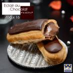 エクレア お取り寄せ スイーツ チョコエクレア(45g×16個) フランス直輸入 Pasquier/パスキエ
