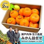 大地さんの蜜柑 みかん 詰め合わせ 2kg 広島県産 送料無料 せとか はるか ネーブル オレンジ 清見 八朔 サンフルーツ レモン など
