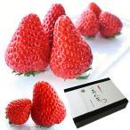 苺八景 いちごはっけい 滋賀県野洲市産 近江 おうみ 特産 紅ほっぺ 2Lサイズ 32粒入り