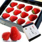 苺八景 いちごはっけい 滋賀県野洲市産 近江 おうみ 特産 紅ほっぺ 3Lサイズ 12粒入り