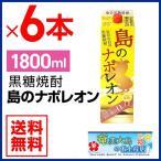 奄美 黒糖焼酎 島のナポレオン 紙パック1800ml×6本 25度セット 奄美大島 お土産