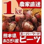 有機栽培 熊本県あさぎり町産 ビーツ 1kg   野菜 栄養 予約販売