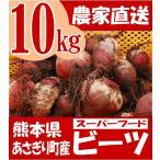 熊本県あさぎり町産 ビーツ 10kg  野菜 栄養