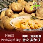 「北海道 じゃがいも 送料無料 きたあかり ギフト」 北海道産 ジャガイモ 北海道産 黄色いじゃがいも キタアカリ 栗じゃが M〜Lサイズ 5kg 価格 1899円