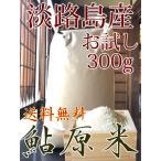 米 300g お米 淡路島 鮎原米 キヌヒカリ 平成30年新米 鮎原産100%精米 送料無料 お試し ポイント消化