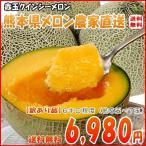 送料無料 熊本県産 クインシーメロン 赤肉 5〜7玉 訳有り 6キロ程度 農家直送品 お試し用