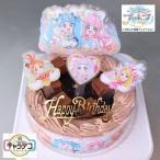 スター☆トゥインクルプリキュア スイーツ バースデーケーキ お誕生日ケーキ キャラデコお祝いケーキ