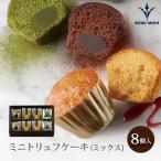 ミニトリュフケーキ(ミックス) 8個入り《MTC-A》『常温配送・焼き菓子』【洋菓子】内祝 贈り物 プレゼント