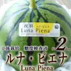 ルナ・ピエナ 高級すいか 高知県夜須町産 約2キロ 糖度検査済 南国土佐の高級すいか