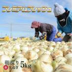 早割特価8%OFF♪ たまねぎ 浜松篠原産 新玉ねぎプレミアムフレッシュ5kg 辛くない 玉ねぎ!タマネギ 玉葱