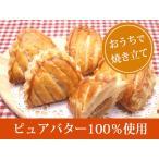 ミニアップルパイ フランス りんごのパイ40g 8個入り