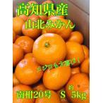 みかん 高知県産 濃厚人気完熟みかん 約5kg 等級秀品 ご家庭 ジュースに スイーツ