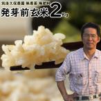 無肥料栽培 発芽前玄米2Kg | 無農薬 福岡県産 夢つくし 0.5分づき米 筑後久保農園