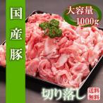 【送料無料】宮崎県産豚肉メガ盛り切り落とし 1000g