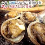 活 アワビ あわび 鮑 (高級 養殖)1個50〜60g  ギフト 海鮮BBQ バーベキュー ((冷蔵))