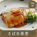 さば生姜煮 2尾(煮魚さば)