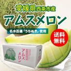 【送料無料】 アムスメロン 愛媛県西条市産 有機肥料・名水百選使用 約5kg 2L〜4Lサイズ 3〜5個入り ※規格・個数はお選び頂けません。