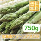 露地栽培北海道グリーンアスパラガス(750g)