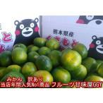 みかん 訳あり 熊本産  1箱 箱込 1箱 箱込10キロ(9kg+保証分500g)フルーツ グルメ