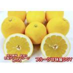 河内晩柑(ジューシーオレンジ) 訳あり 1箱 箱込10キロ(9kg+保証分500g)  熊本産 宇和ゴールド みかん 和製グレープフルーツ