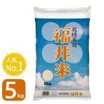 新米 お米5kg 30年産 福井米 福井県産 白米 5kg 送料無料